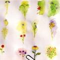 Flowers for Flyers – Playa del Carmen, Mexico(1999)
