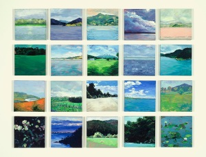 36 Views of Aotearoa (in progress) 2013-14_sm