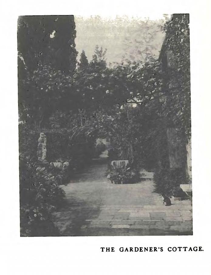 Giardino delleden 2016 17 cynthia imogen hammond garden in venice sm publicscrutiny Image collections